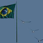 Winds of Brazil - blue by delcueto