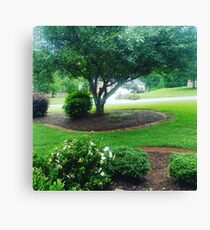 Greenery Outdoors Canvas Print