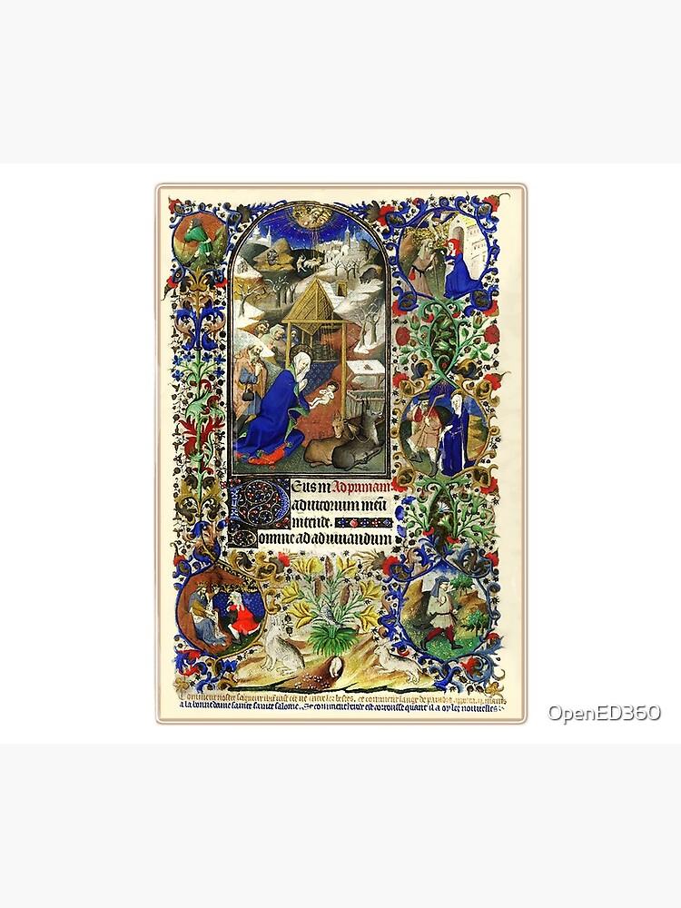 Illuminated New Testaments Nativity Scene by OpenED360