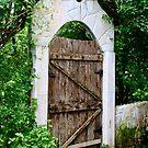 Old Garden Gate by Barbara  Brown