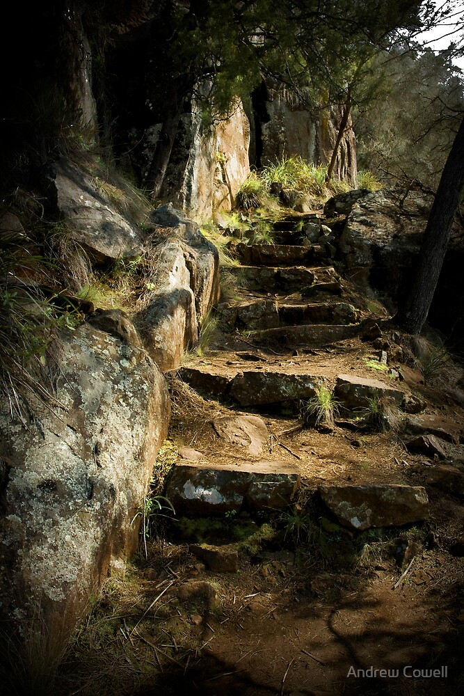 the path by Andrew Cowell