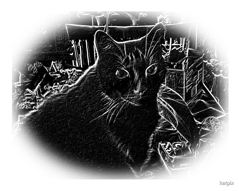 Kat in Black by katpix