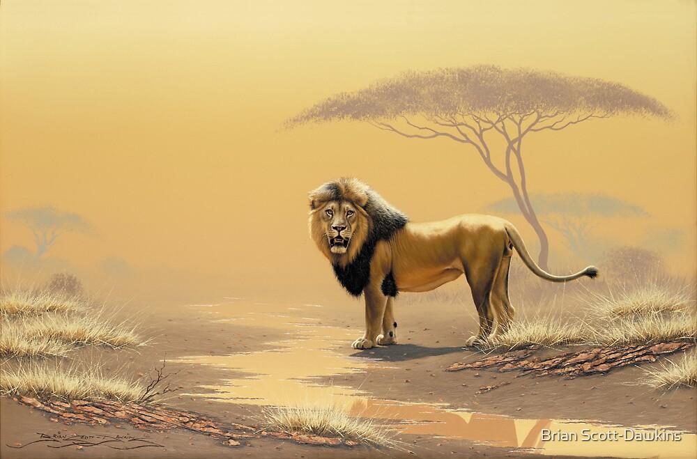 Lion King by Brian Scott-Dawkins