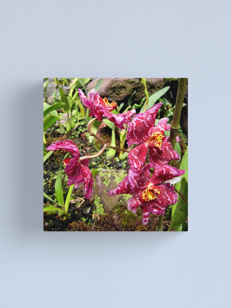 Alternate view of Ruffled Red Canvas Print