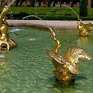 Palais het Loo fountain by Nancy Richard