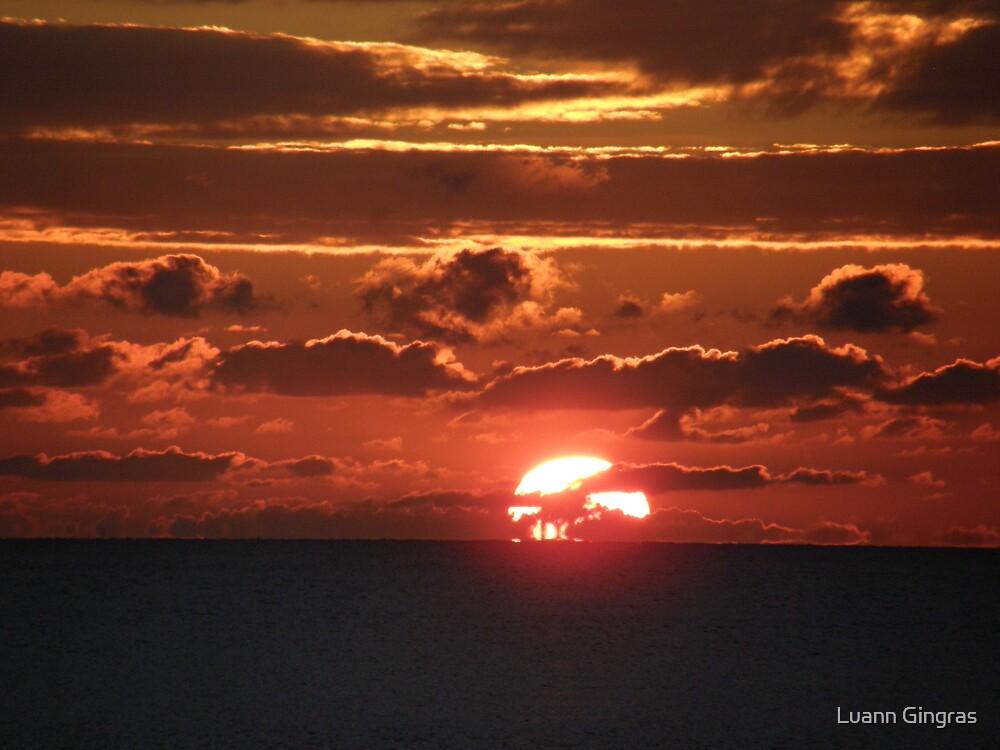 My Sunset by Luann Gingras