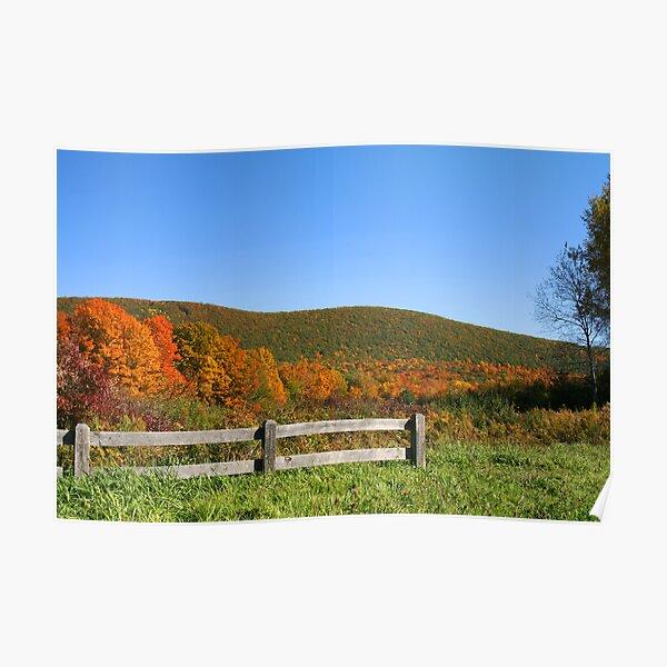 Nature's Overlook Poster