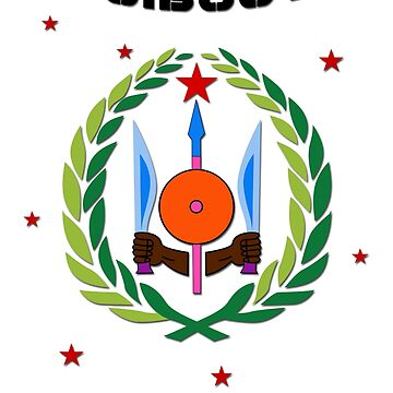 Djibouti Flag - Coat of Arms - Africa by lemmy666