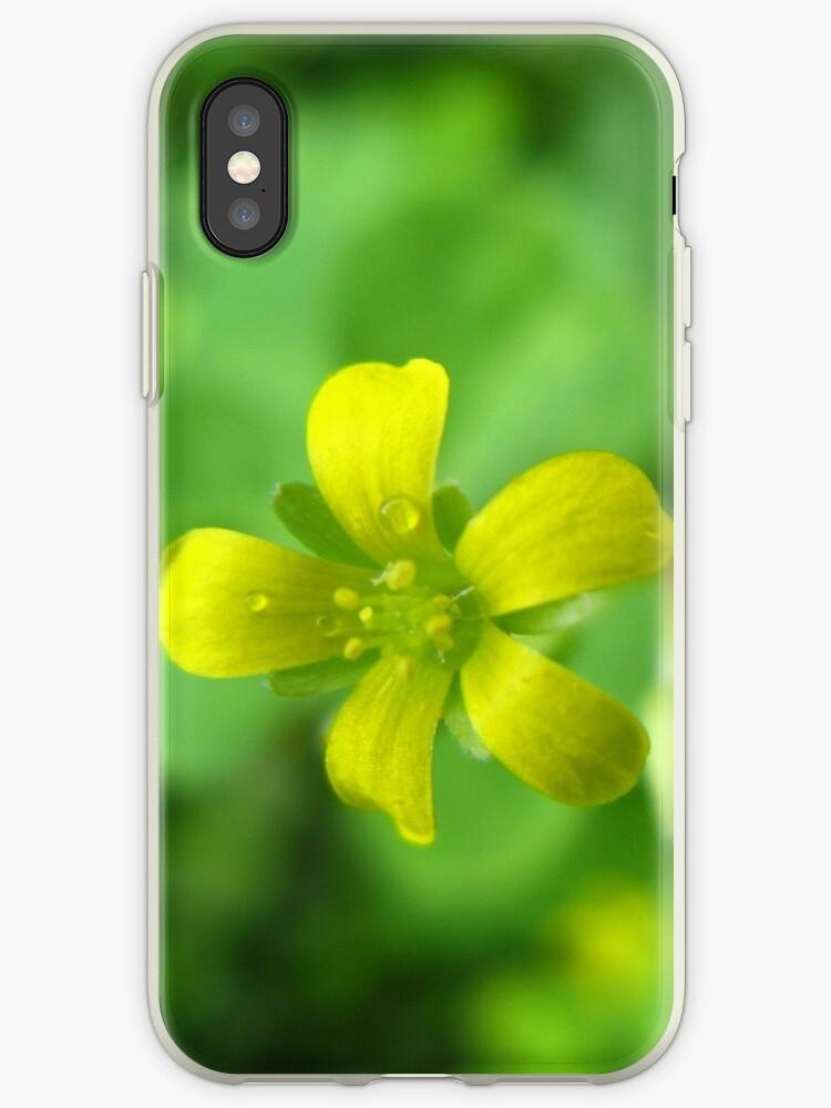 Wild Flower by NagVani