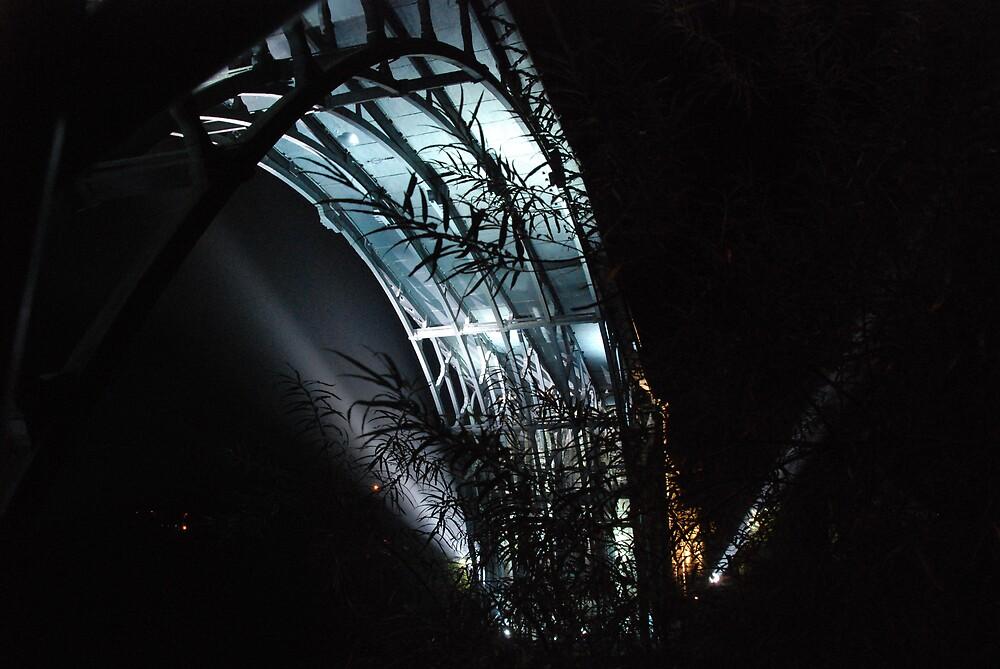 Ironbridge by BevC