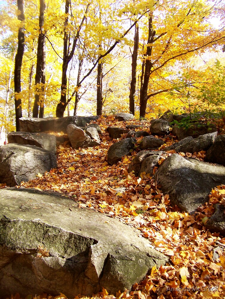 Waterfall of Autumn by Amanda McGreck