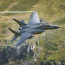 USAF f15 Strike Eagle by alan tunnicliffe