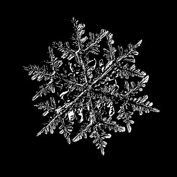 Snowflake vector - 2017-02-13_3 black by chaoticmind75