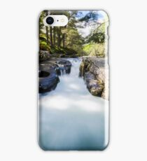 The Punch Bowl iPhone Case/Skin