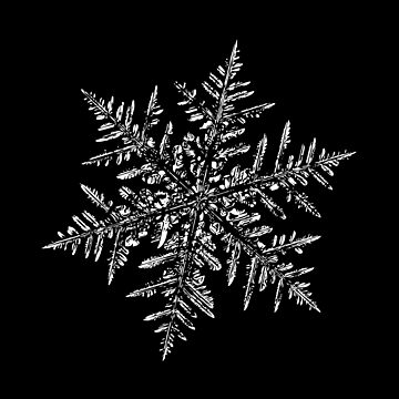 Snowflake vector - Silverware black by chaoticmind75