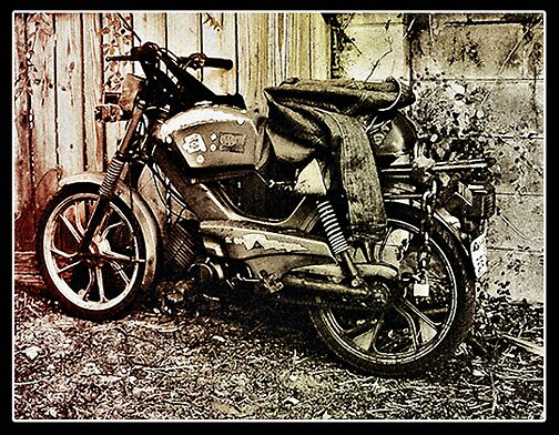 Moped Madness by Steve Sperry