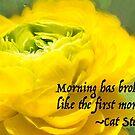 Morning has broken by Marilyn Cornwell