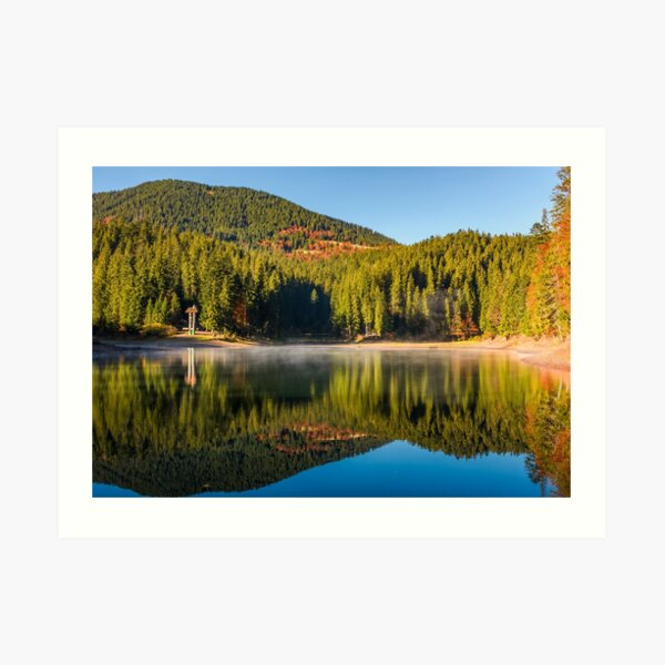forest reflection on foggy surface of Synevyr lake Art Print