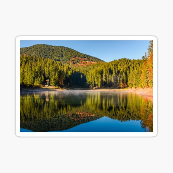 forest reflection on foggy surface of Synevyr lake Sticker
