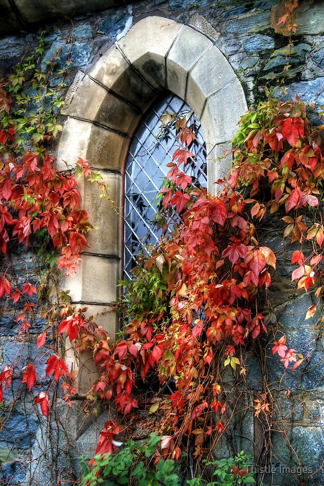 Loch Achray church window by Thistle Images