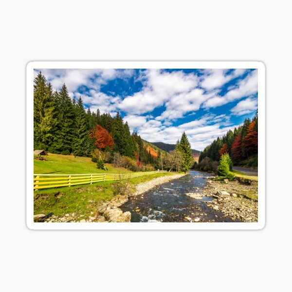 small river in spruce forested mountains Sticker