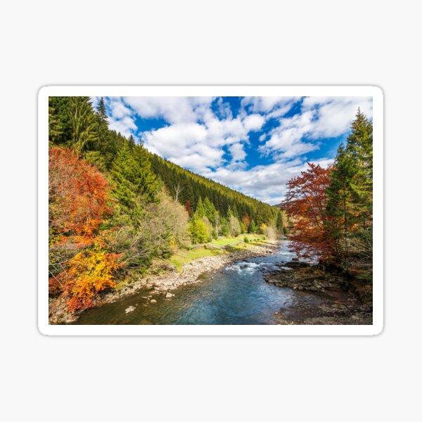 gorgeous autumn landscape in mountains Sticker