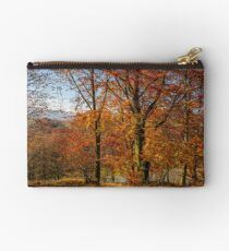 forest with red foliage on sunny day Studio Pouch