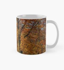 forest with red foliage on sunny day Mug
