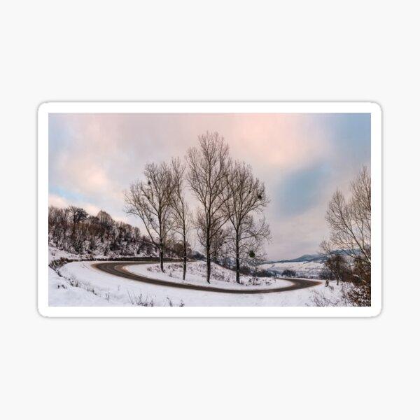 trees on serpentine on winter morning Sticker