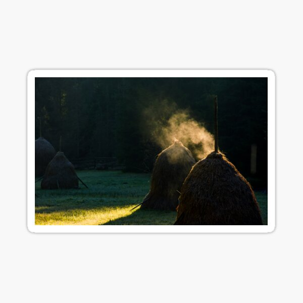 steaming haystack near the forest at sunrise Sticker