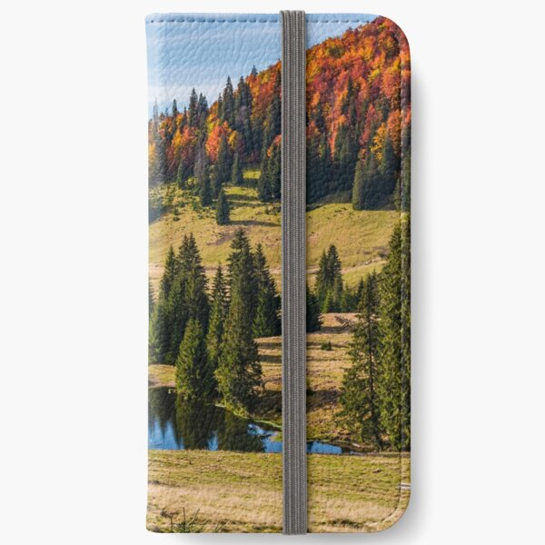 Pond in Carpathian mountains in autumn iPhone Wallet