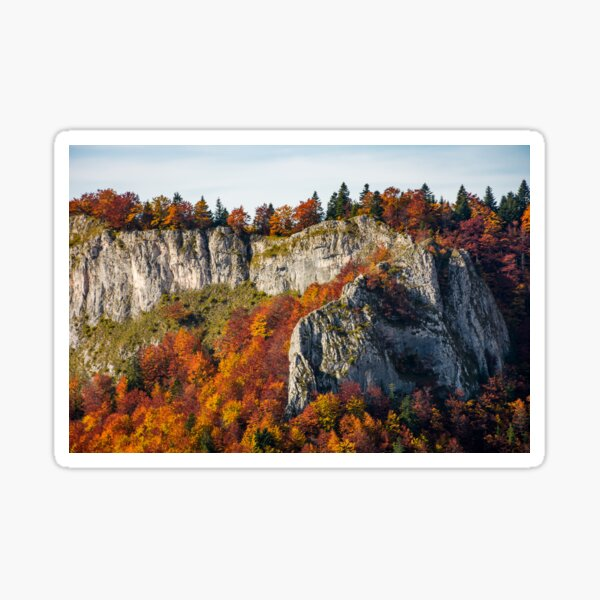autumn forest on a rocky cliff Sticker