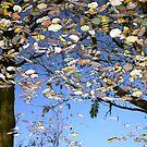 Autumn Art by Jo Nijenhuis