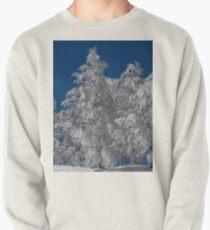 Snowy Tannenbäume Sweatshirt