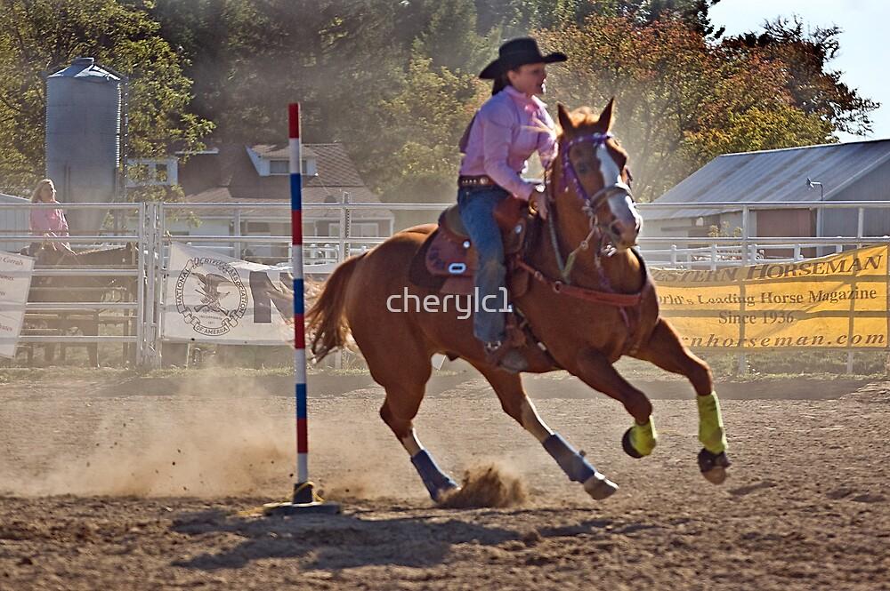 Rodeo Girl by cherylc1