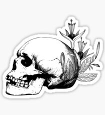 Skull and Feathers Sticker