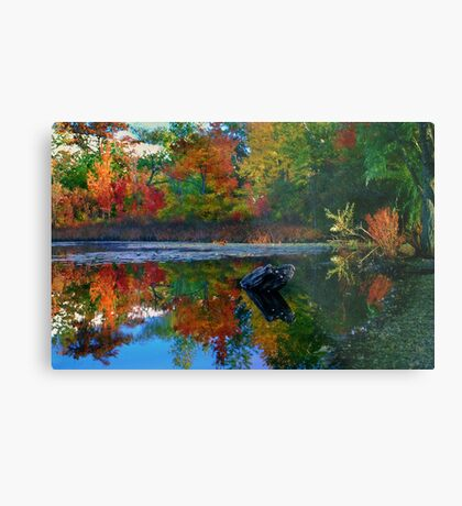 Many colors of New England Metal Print