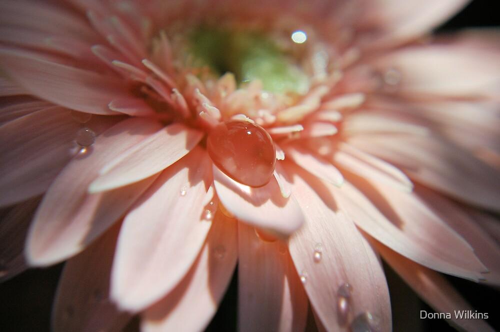 Pink Bubble II by Donna Adamski
