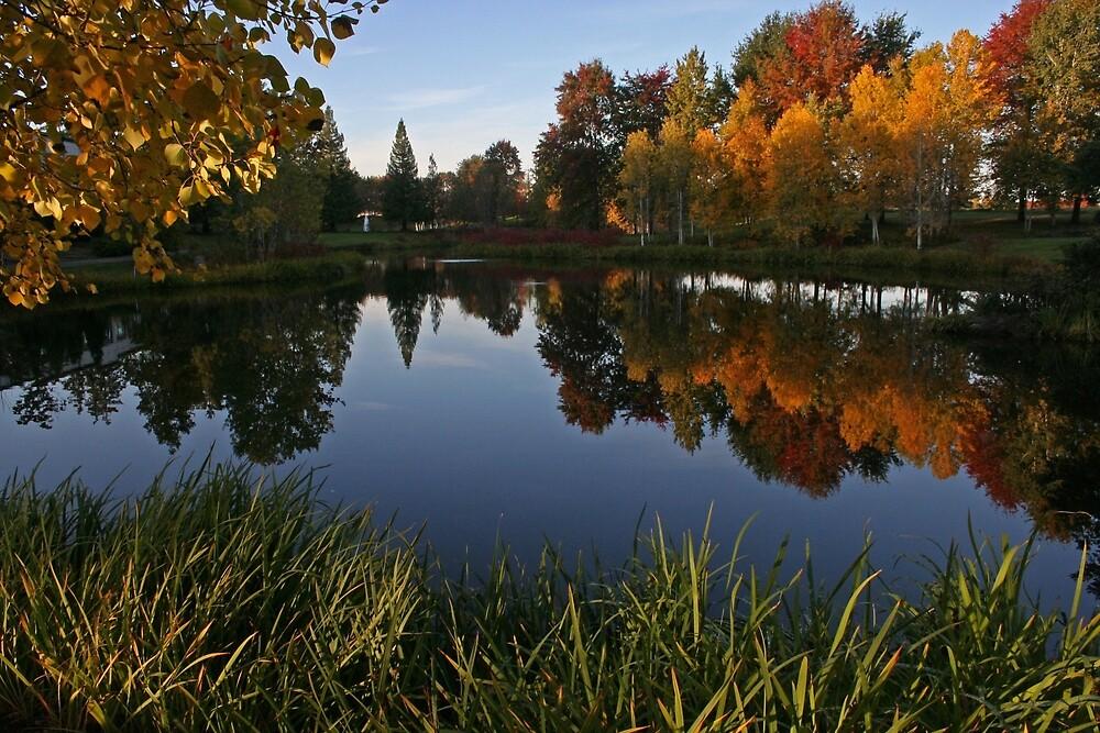Dawson Creek Park by Ran Richards