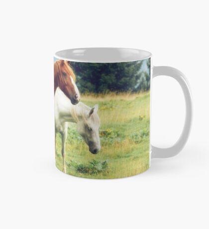 Romanian horses Mug