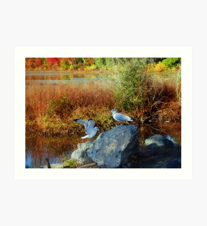 Indian Summer or warm fall days in New England Art Print
