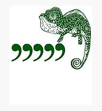 Funny Comma Chameleon T Shirt Photographic Print