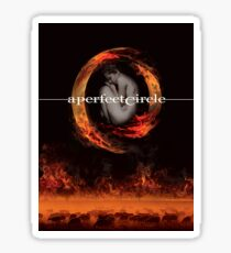 A Perfect Circle And Stunning Ideas Poster Sticker