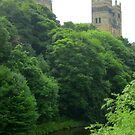 The River Wear at Durham by BlueMoonRose