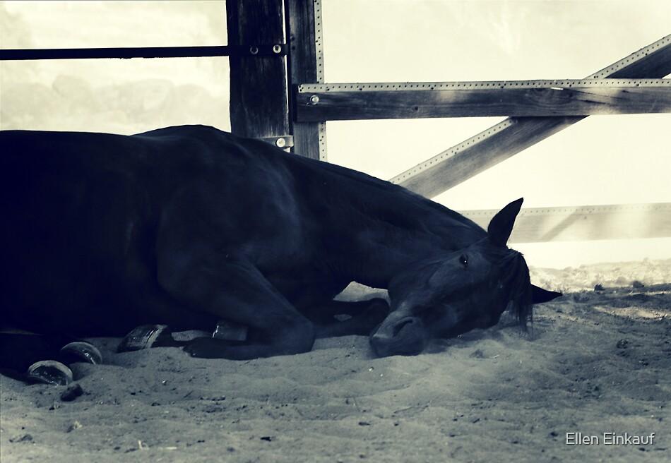 Now I Lay Me Down To Sleep... by Ellen Einkauf
