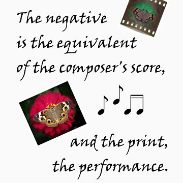 Negative is to Composer's Score... by JustShirts