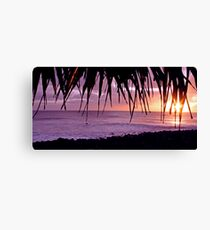 Lennox Head sunrise Canvas Print