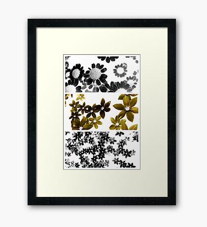 Specimens from the Inverted World Framed Print