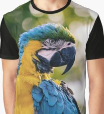 Colorful Parrot  Graphic T-Shirt