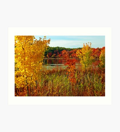 Chestnut Hill's colors Art Print